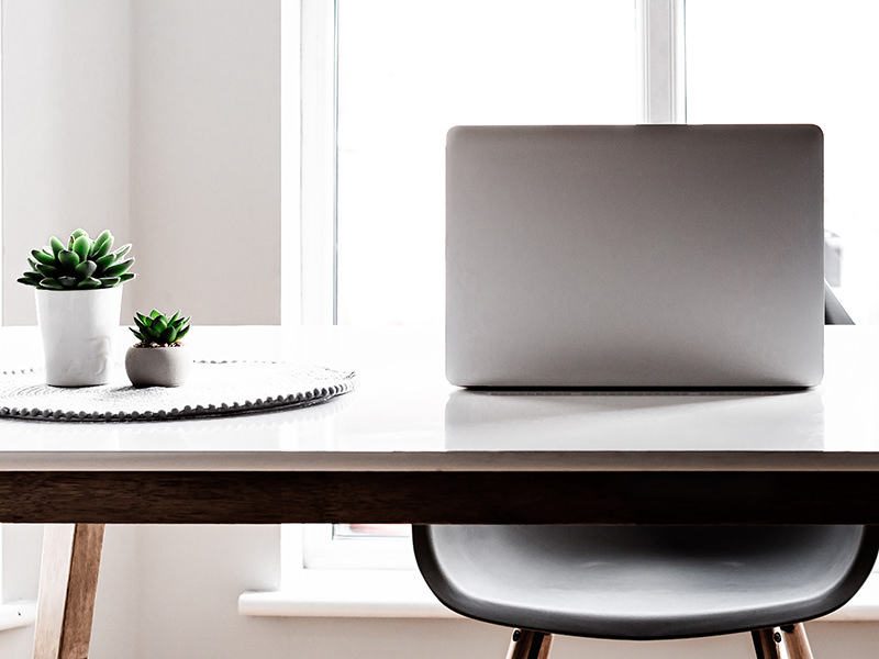 laptop and plants on desk in front of office window