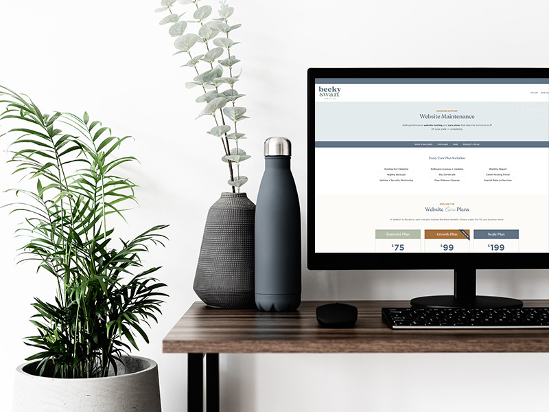 WordPress website maintenance plans on computer monitor